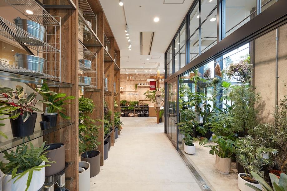 無印良品 東京有明 1F GREEN&FLOWER売り場